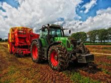 Traktor mit Anhänger auf Feld