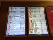 Na klar, auf der Anzeigetafel ist ein einziger Flug verspätet: meiner!
