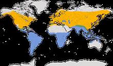 Karte zur Verbreitung der Rauchschwalbe (Hirundo rustica)