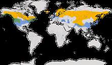 Karte zur Verbreitung des Gänsesägers.
