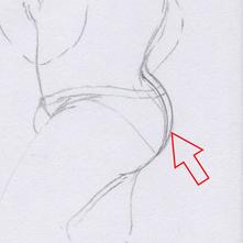 図1 ヒップライン