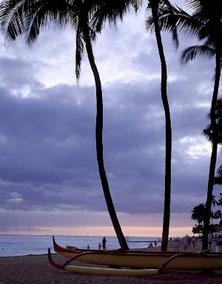 ハワイオアフ島の美しい夕暮れサンセット、ビーチからの景色、パームツリーと小船