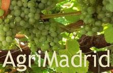 Agrimadrid
