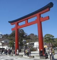 鶴岡八幡宮の三の鳥居。この前を右から左にに通っている道路が、かつてのメインストリートでした。