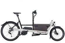 Riese & Müller Packster 40 Touring HS - XXL e-Bike - 2020