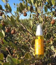 ♔ 原種ホホバの聖地アリゾナ州ハクアハラヴァレー原産 100%ナチュラル原種のゴールデンホホバオイル『ホホゴールド』