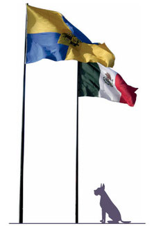 Poste Asta Bandera  hecho con poste cónico circular o recto, Medidas desde 3m - 12m Dilae