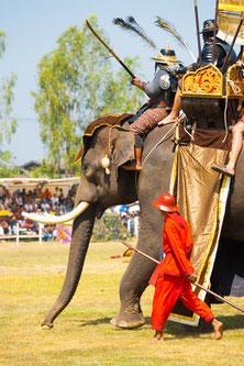 Elefanten-Festival in Surin, Thailand