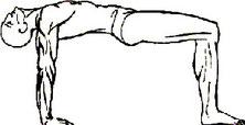 Пять тибетских жемчужин. Упражнение 4