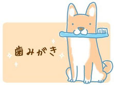犬の歯磨き講座 埼玉 白岡 蓮田 加須 宮代 杉戸 春日部 さいたま