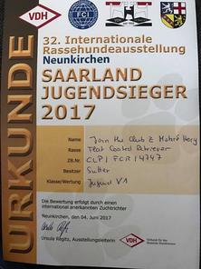 Saarland-Jugendsieger 2017