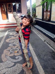 パングルになる前の「マダス」の木