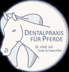 Dentalpraxis für Pferde, Julie Schwechler