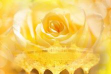 まず自分を愛と光で満たす【おすすめ記事特集】