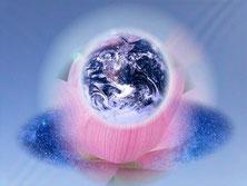 調和のとれた生き方と直感【自己変容の道】