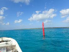 竹富島を行くダイビングボートHARU号