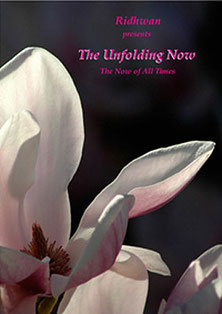 DVD: The Unfolding Now - The Now of all Times