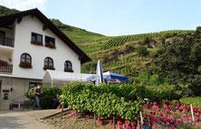 Nach der Planwagenfahrt servieren wir Ihnen auf der Weingut-Terrassese die Speisen und dort finden auch die Weinproben statt.