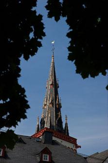 Mies-Vandenbergh-Fotografie Wandern, Traumpfade