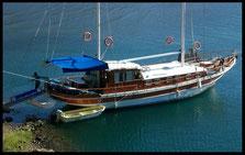 gulet king liam