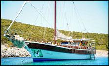 gulet sea life s