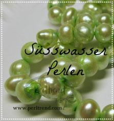 Perlen Süsswasser www.perltrend.com freshwater pearls beads Luzern Schmuck Schweiz Onlineshop Jewellry