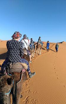 ラクダに乗って、移動する事約1時間