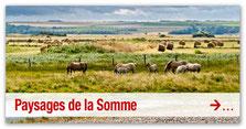 Paysages de la Somme et de Picardie
