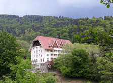 Schwarzwald, Glottertal,  Freiburg, ...