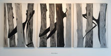 Love the Forest, acrilico s/lienzo, 116x81, 116x89, 116x81 cm, 2005