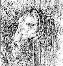 caballo_rana; al girarlo a la derecha, cambia su identidad