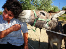 (Daniela with our donkey Stella)