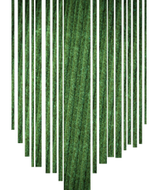 ribflueel