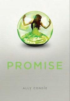 Promise T1 chronique ado