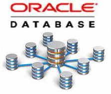 LUXIEL Technologies Administrateur Base de Données DBA ORACLE SQL PLSQL Java JEE