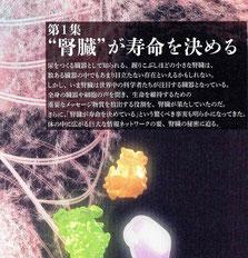 """第1集 """"腎臓""""が寿命を決める"""
