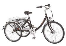 Pfau-Tec Proven Dreirad Elektro-Dreirad Beratung, Probefahrt und kaufen in Münster