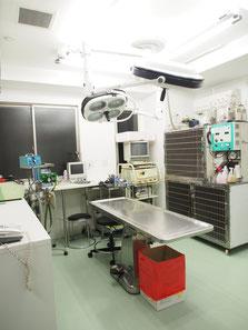 エルム動物病院 杉並区 荻窪 動物病院