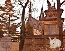 Романтическая прогулка у кладбищенской ограды =)