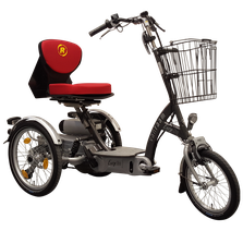 Van Raam EasyGo Scooter-Dreirad Elektro-Dreirad Beratung, Probefahrt und kaufen in Pfau-Tec Scootertrike Sessel-Dreirad Elektro-Dreirad Beratung, Probefahrt und kaufen in Oberhausen