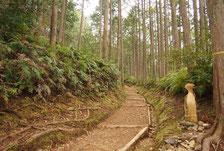 事例 熊野古道