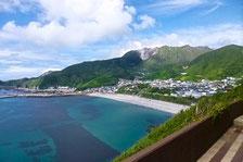 事例 神津島