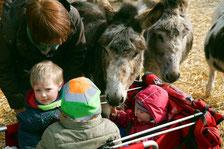 Esel und Kindergruppe, Wendland