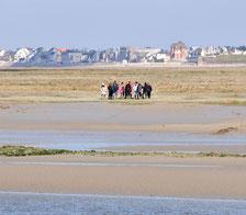 Somme Groupes - Somme - Groupes - Baie de Somme - Voyages en groupes - Scolaires - Promenade en Baie - Activités - Hauts de France - Picardie