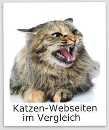 Termine - Katzenausstellung,Bildquelle: fotolia.com