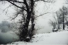 Le Rhône sous la neige