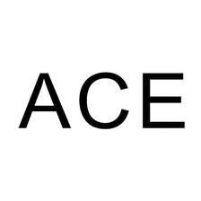 ACE ingenieursconsult