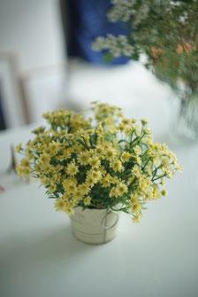 お花を明るく鮮やかに撮りましょう