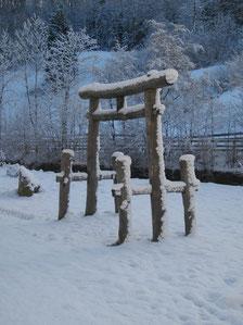 Shinto-Tor, 2011