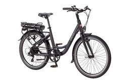 Werkstattersatz E-Bike Elektrofahrrad